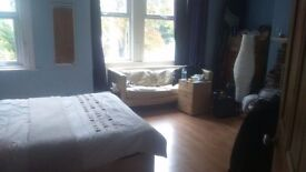 Two attractive double bedrooms to rent in house in Surrenden Road near Preston Park