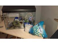 Fish Tank and acessories