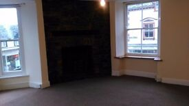 one bed flat central position Rhayader - good condition