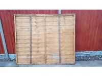 NEW FENCE PANEL £12 6x5 foot