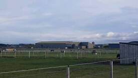 Horse Paddock and Shelter Lossiemouth. 1.5 acres