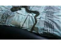 4ft python