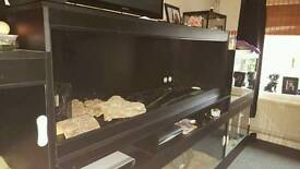 6ft x 2ft vivarium