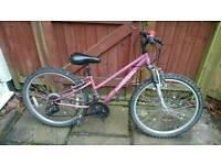 Girls appollo mountain bike
