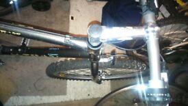 raleigh lightweight mountain bike