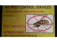 Pest Control Services, West Midlands, Birmingham, Walsall, Coventry, Tamworth, Solihull, Knowle