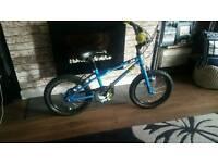 Apollo bike. Suitable for children 112 - 125 cm