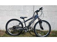 "Boys Raleigh 24"" Mountain Bike"
