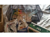 Russian dwarf hamster, cage, food, food bowls, bedding and toys