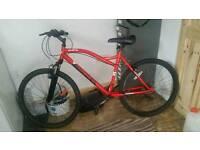 Mint MuddyFox Mountain Bike