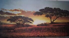 Magnificent African Sunset Canvas
