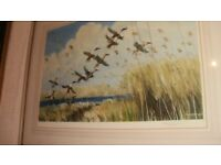 sir peter scot ltd edition ,signed decorative print framed ducks,in flight norfolk /marshes
