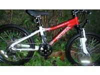 """Kona Shred 2-0 20 """" wheels 11 inch frame kids boys child's bike bicycle not Islabike Specialized"""