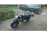 Lefan Monkey Bike Q Plate Imported bike