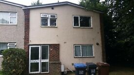 4-Bedroom Student House in Hatfield to Let