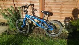 Boys Bmx bike.