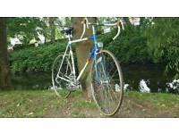 Raleigh bicycle team Panasonic