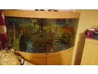 Juwel 360 corner fishtank