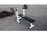 WEIGHTS & DIP BENCH & BARBELL & 40KG CAST IRON