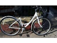 Adventure Ladies Hybrid/ City Bike