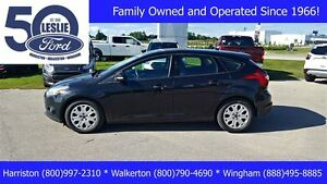 2013 Ford Focus SE Hatchback | Heated Seats | One Owner