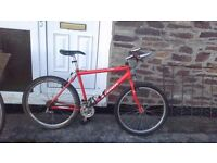 raleigh max mens mountain bike 21 speed