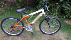 Concept suspension mountain bike one of many quality bicycles for sale