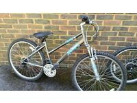 Raleigh Bike, Very good condition. 22`` Wheels. Grey. Call or text Debbie on 079621