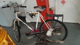 muddy fox bike, with car carrier