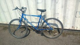 RALEIGH ASCENDER MOUNTAIN BICYCLE 15 SPEED 26 INCH WHEEL AVAILABLE FOR SALE