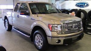 2013 Ford F-150 XLT (Remote Start  Back Up Camera  Bluetooth)
