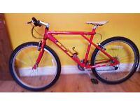 GT Tempest Mountain Bike