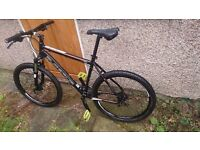 MTB bicycle SUPERIOR L size FULL SERVICED not trek giant cube specialized scott