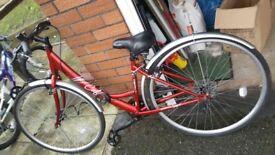Bike and bike rack