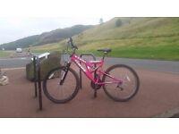 Sabre Sportz Girls/Ladies Bike