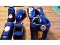 WCKA Kickboxing Pads