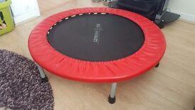 Leisurewise rebounder exercise trampoline