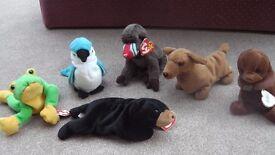 TY Beanie Soft Toys