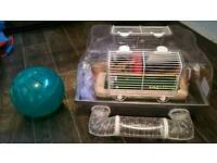 Set for a hamster