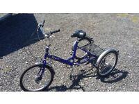 Pashley TRI -1 Trike junior / adults size