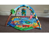 Under-the-Sea Baby Einstein play gym with musical turtle in very good condition