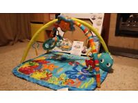 Baby einstein baby gym / play mat