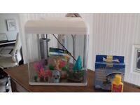 30 litre fish tank and ornaments