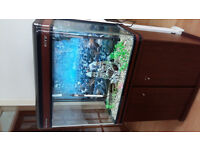 BOYU 180 LITER FISH TANK FOR SALE,,FULL SET UP,PERFECT CONDITIONS