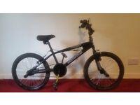 Sliverfox Reaper Kid's BMX Bike