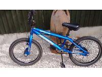 Blue Apollo BMX bike
