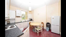 Bright Double room by Putney High Street, 5min walk to Train and Underground *** NO EXTRA ***