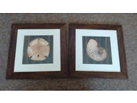 Pair of pictures in brown, textured wooden frames.