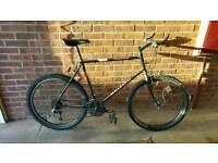 Retro Mountain Bike Raleigh Moonrun