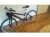 Pendleton bike brand new